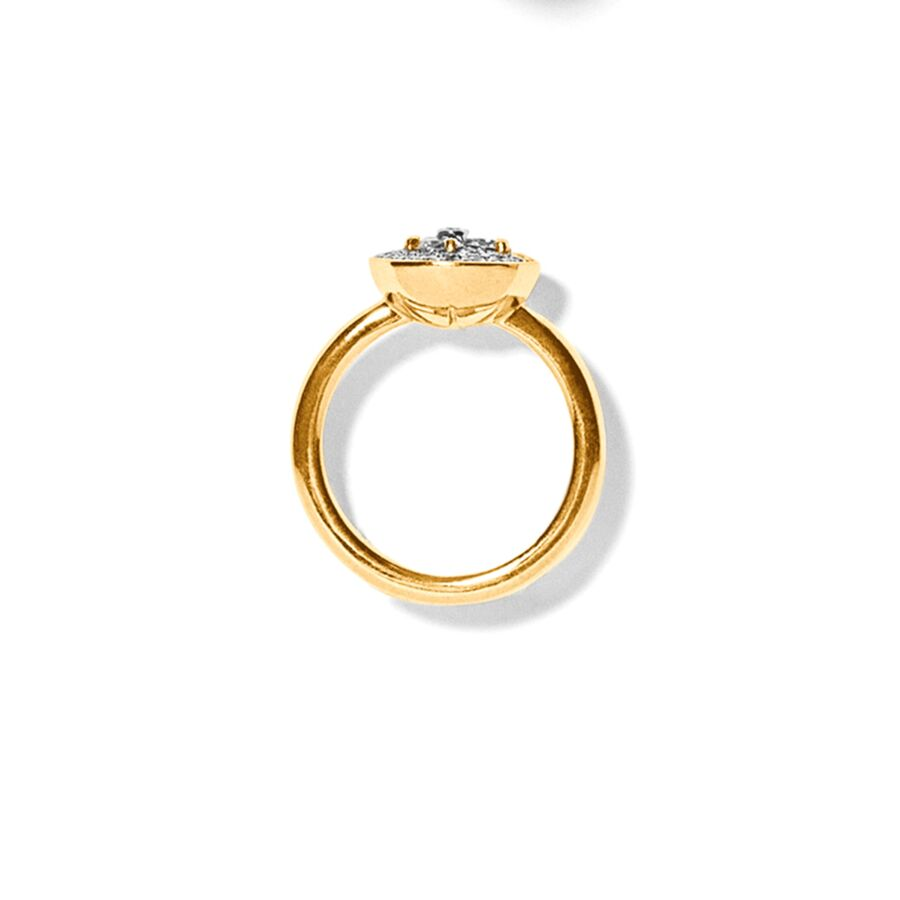 MISS REGALEMENT gold diamond